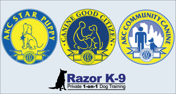 dog-training-birmingham-bloomfield-hills-mi